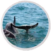 Round Beach Towel featuring the photograph Play Time by Debra Forand