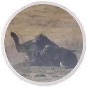 American Bison Playing In The Dirt At Custer State Park South Dakota Round Beach Towel