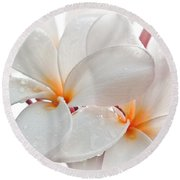 Round Beach Towel featuring the photograph Plumeria by Roselynne Broussard