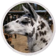 Polka Dot Llama Pogo Rules Round Beach Towel by Belinda Lee