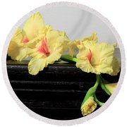 Round Beach Towel featuring the photograph Poised Glady by Deborah  Crew-Johnson