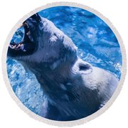 Polar Bear Round Beach Towel
