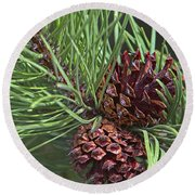 Ponderosa Pine Cones Round Beach Towel