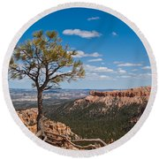 Ponderosa Pine Tree Clinging To Life On Canyon Rim Round Beach Towel by Jeff Goulden