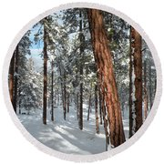 Ponderosa Winter Round Beach Towel