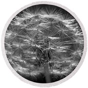 Round Beach Towel featuring the photograph Poof - Black And White by Joseph Skompski
