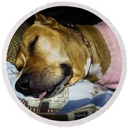 Round Beach Towel featuring the photograph Pooped Pup by Robyn King