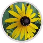 Round Beach Towel featuring the photograph Pop Yellow by Arlene Carmel