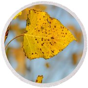 Poplar Tree Leaf Round Beach Towel