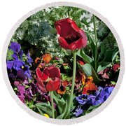 Round Beach Towel featuring the photograph Poppies by Mae Wertz