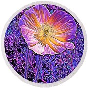 Round Beach Towel featuring the photograph Poppy 3 by Pamela Cooper