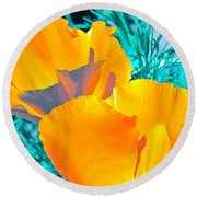Round Beach Towel featuring the photograph Poppy 4 by Pamela Cooper