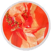 Round Beach Towel featuring the photograph Poppy Palette In Red by Brian Boyle