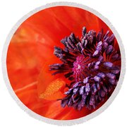 Poppy's Purple Passion Round Beach Towel