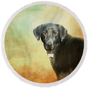 Portrait Of A Black Labrador Retriever Round Beach Towel