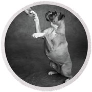 Portrait Of A Boxer Dog With A Hand Round Beach Towel