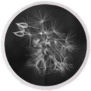 Portrait Of A Dandelion Round Beach Towel