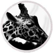 Portrait Of A Giraffe Round Beach Towel