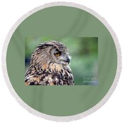 Portrait Of A Great Horned Owl Round Beach Towel