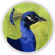 Round Beach Towel featuring the painting Portrait Of A Peacock by Deborah Boyd
