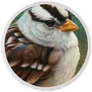 Portrait Of A Sparrow Round Beach Towel by James W Johnson
