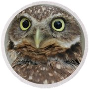 Portrait Of Burrowing Owl Round Beach Towel