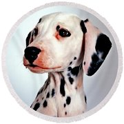 Round Beach Towel featuring the painting Portrait Of Dalmatian Dog by Lanjee Chee