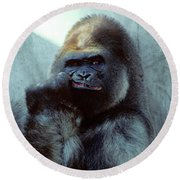 Portrait Of Male Gorilla Gorilla Gorilla Round Beach Towel