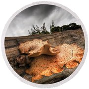 Pot Of Gold - Glowing Fungi Round Beach Towel