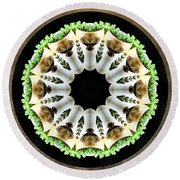 Round Beach Towel featuring the photograph Potted Plant Kaleidoscope by Betty Denise