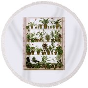 Potted Plants On Shelves Round Beach Towel