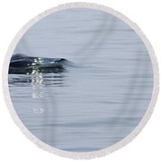 Round Beach Towel featuring the photograph Power In Motion by Marilyn Wilson