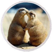 Prairie Dogs Kissing Round Beach Towel