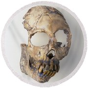 Prehistoric Primate Skull Round Beach Towel
