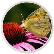 Pretty As A Butterfly Round Beach Towel by Roger Becker