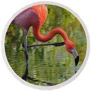 Pretty Flamingo Round Beach Towel
