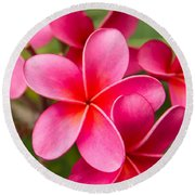 Pretty Hot In Pink Round Beach Towel