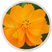 Pretty In Orange Round Beach Towel by Mariarosa Rockefeller