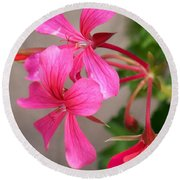 Pretty In Pink Round Beach Towel by Eunice Miller