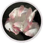 Pretty In Pink Round Beach Towel by Photographic Arts And Design Studio