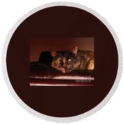 Pretty Kitty Round Beach Towel by Oksana Semenchenko