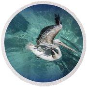 Round Beach Towel featuring the photograph Pretty Pelican by Pennie  McCracken