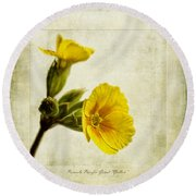 Primula Pacific Giant Yellow Round Beach Towel