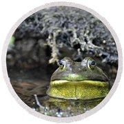 Round Beach Towel featuring the photograph Bullfrog by Glenn Gordon