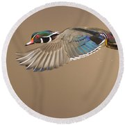 Probably The Most Beautiful Of All Duck Species Round Beach Towel by Mircea Costina Photography