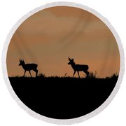 Pronghorn Sunrise Round Beach Towel