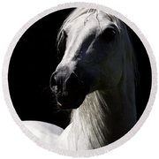 Proud Stallion Round Beach Towel