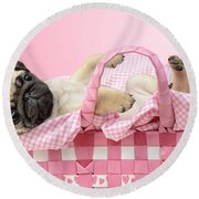 Pug In A Basket Round Beach Towel