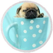 Pug In A Cup Round Beach Towel