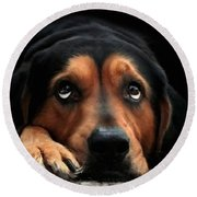 Round Beach Towel featuring the mixed media Puppy Dog Eyes by Christina Rollo